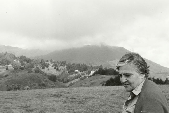 No Answer is Possible – Etel Adnan